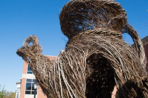 "A shot of Patrick Dougherty's ""Step Right Up"" sculpture outside of Ackland Art Museum."